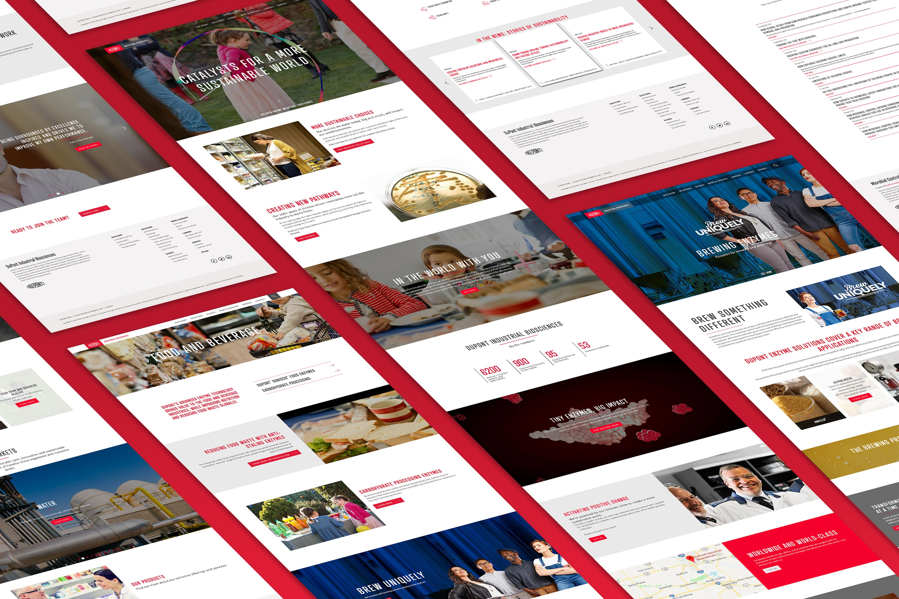 DuPont IB Website-Isometric website mockup